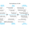 backbone, CEM, inform strategy